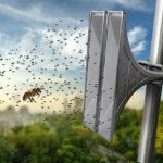 ¿Cómo pueden dañar los insectos su sistema de alerta?