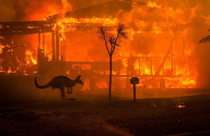 fuego de australia